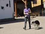 Elena Borrione educa cane