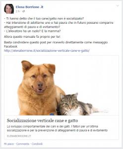 Socializzazione-verticale-fb