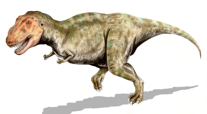 Tirannosaurus