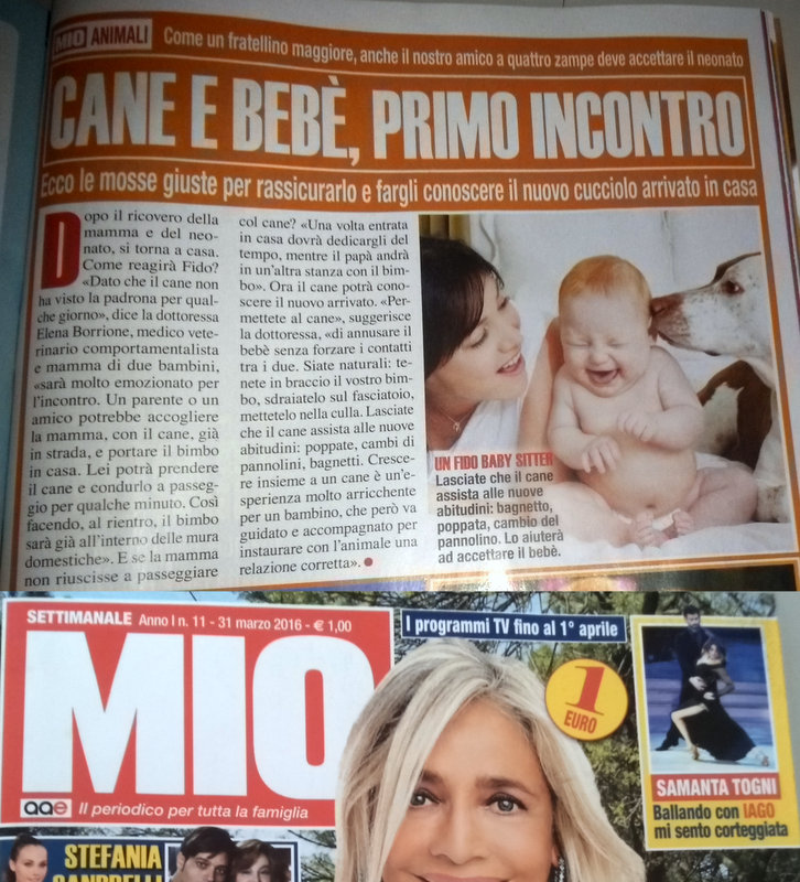 articolo-MIO-3