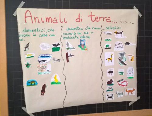 Didattica veterinaria a scuola